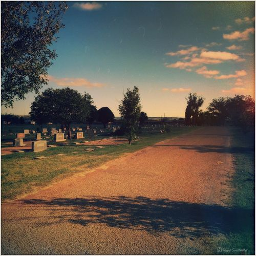 Cementery Landscape IPhoneography Mobile Photography