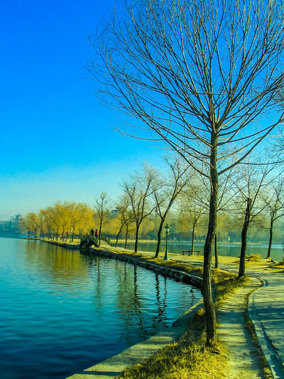 Scenic view at the Mountain Resort in Chengde during autumn Bare Tree Beauty In Nature Blue Branch Clear Sky Day Lake Nature No People Outdoors Reflection Scenics Sky Tranquil Scene Tranquility Tree Water Waterfront