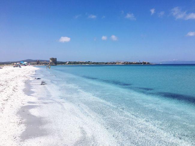Sardinia Sardegna Stintino Sea Sky Beach Water Nature Sand Day Blue No People