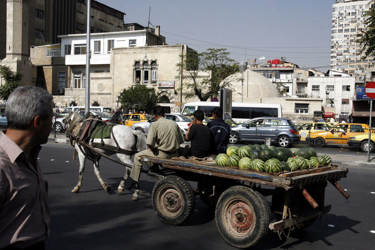Man looking at people carrying watermelons on horse cart at street
