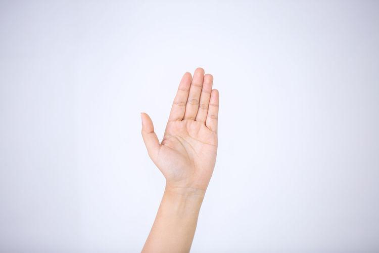 Hand Human Body