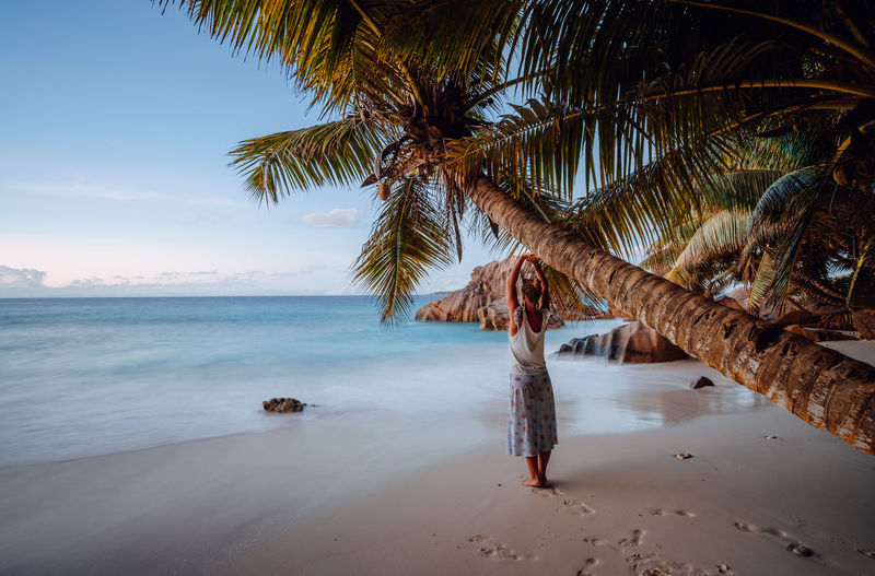 Woman standing by tree at beach