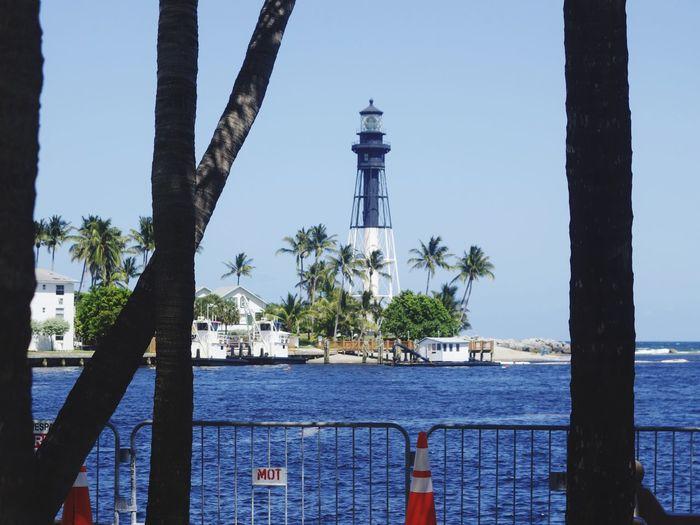 Resort Vacation Destination Lighthouse Island Ferry Membersonly Tree Trunks Ocean View Inlet Beautiful Day Florida Hidden Gems