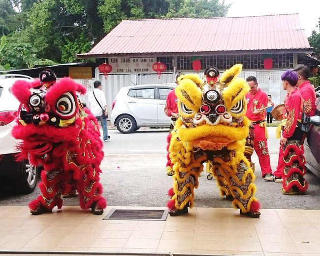 🦁舞师,华人的传统文化Chinese Culture Happy Chinese New Year 2017 With Family Members Photography Homtown
