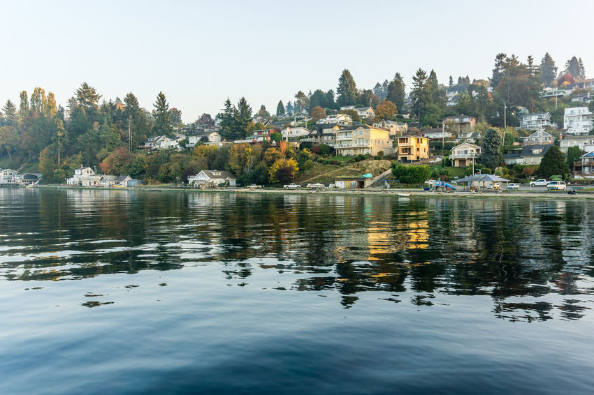 Waterfront neighborhood homes in Dash Point, Washington. Water Architecture Building Exterior Built Structure Tree Waterfront Sky Reflection Plant Lake Building Nature Day Clear Sky No People Beauty In Nature Residential District City Outdoors Shoreline Dash Point Reflection Ocean