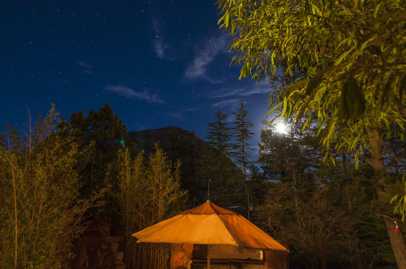 Tent amidst trees against sky at night