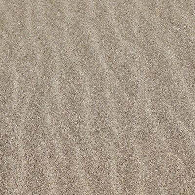 Goodmorning Japan Sea Sand Wave 砂 海