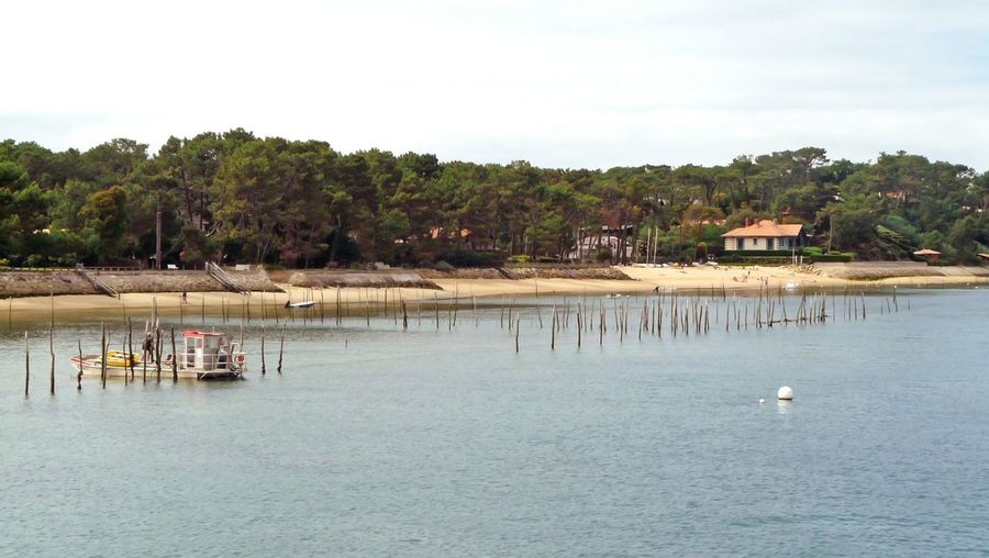 Bassin D Arcachon Peninsula Ostréiculture Boat Aquitaine Beach Beach Villa Pines Water White Buoy Tranquility Outdoors 16x9photography In Cap Ferret Aquitaine, France