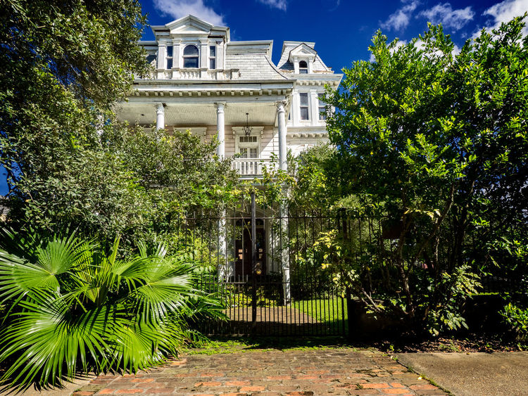 Old Abandoned House in New Orleans Architecture Building Exterior Built Structure Day Nature New Orleans New Orleans Architecture New Orleans, LA No People Outdoors Sky Travel Destinations Tree