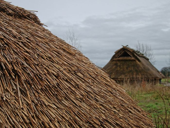 Architecture Building Exterior Built Structure Close Up Day Nature No People Outdoors Roof Rural Scene Sky Thatched Roof Museum