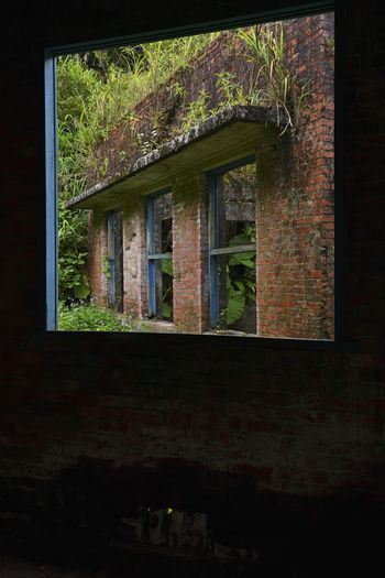 Mining site ruins ruins Monuments Remains Ruins Abandoned Architecture Building Building Exterior Built Structure Day Glass - Material House Mining Mining Area Nature No People Obsolete Old Outdoors Plant Reflection Residential District Tree Wall Window Window Frame
