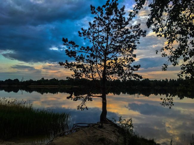 The Great Outdoors - 2017 EyeEm Awards Tree Sky Cloud - Sky Beauty In Nature Nature River