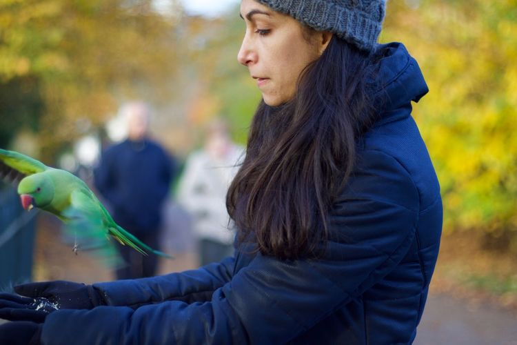 Side View Of Woman Feeding Parrot In Park