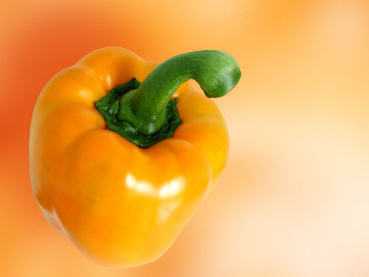 Bell Pepper Close-up Colored Background Food Food And Drink Freshness Green Color Healthy Eating Indoors  No People Orange Background Paprika Pepper Pepper - Vegetable Plant Plant Stem Red Bell Pepper Ripe Single Object Studio Shot Vegetable Vegetarian Food Wellbeing Yellow