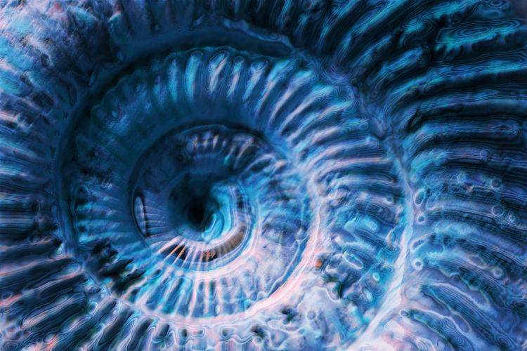 Full frame shot of spiral pattern