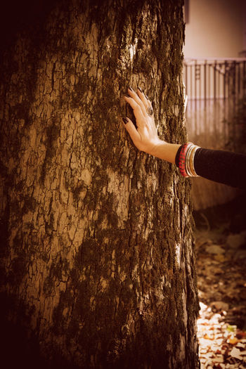 Fashion Stories Adult Close-up Day Human Body Part Human Hand Jewelry Leisure Activity Nature One Person Outdoors People Real People Standing Tree Tree Trunk