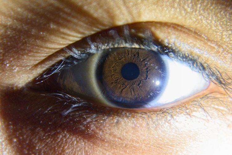 Eye Eye Macro Photography Macroeye Iris Eyes