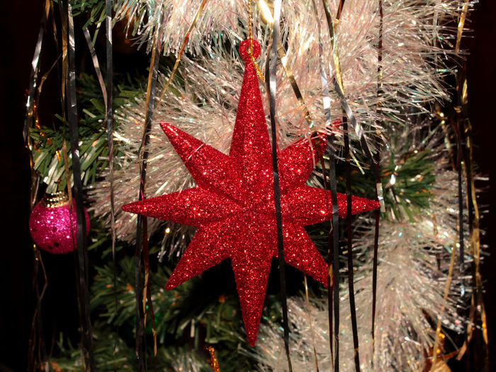 Ball Blue Christmas Christmas Around The World Christmas Balls Christmas Decoration Christmas Decorations Christmas Lights Christmas Ornament Christmas Spirit Christmas Star Christmas Tree Christmastime Christmastree Close-up Flower Gold Stars Green No People Ornaments Red Red Star Star Wood