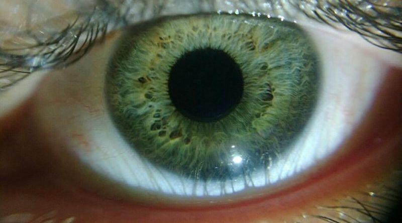 Eye Olho Olhos Olhos Verdes Green Eyes My Eye Green