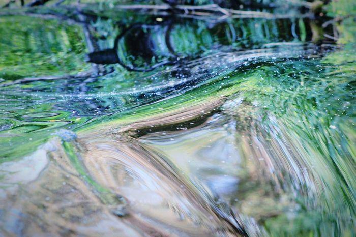 Water Nature Green Deformation photo, editing by Svitlana & Mykola Marusyk