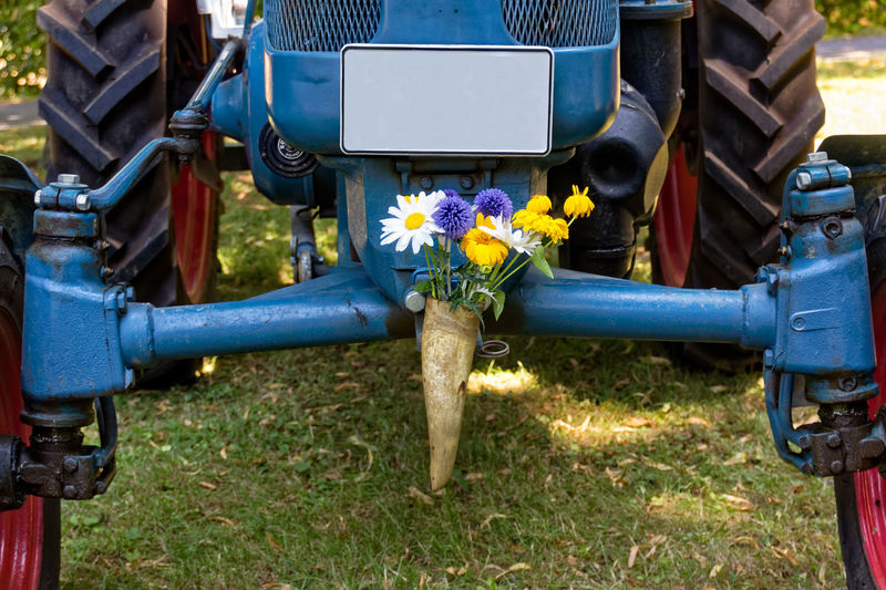 Blue Close-up Day Field Flower Grass Horn Land Vehicle Low Section Machinery Nature No People Outdoors Technology Transportation Wheel