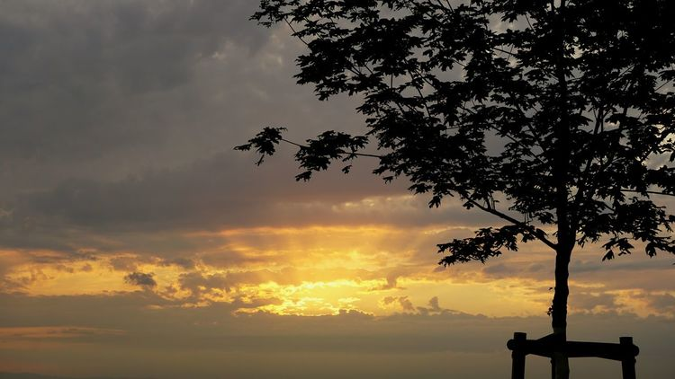 Sky Evening Turmberg Karlsruhe Taking Photos Enjoying Life Colors Light And Shadow Nature Durlach Leaves Summer Clouds And Sky Clouds