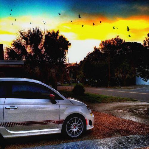 NEM Submissions NEM Clouds Florida Fiat500 Abarthgram AbarthOnly Abarth