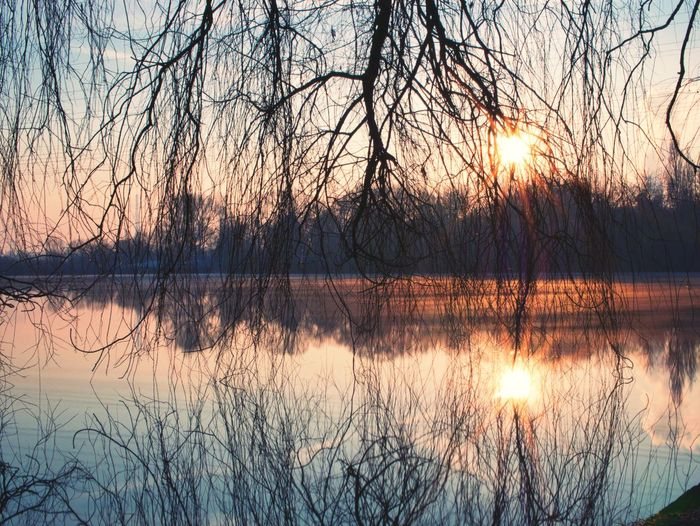 Good Morning Beauty Sunrise Reflection Lake Scenics Nature Beauty In Nature Bare Tree Tranquil Scene Tree Water Outdoors Sky Sun Branch Sunlight No People