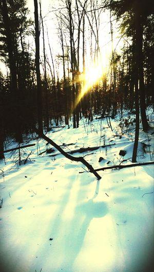 Last of Winter.