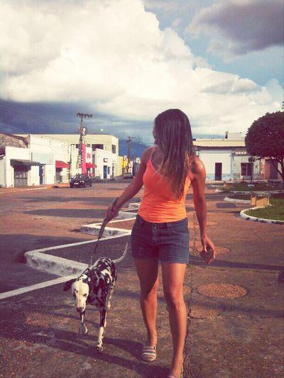 ela não anda, ela desfila Dog Dalmata