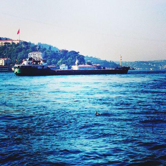 Walking Around Karabatak Bigship Bosphorus