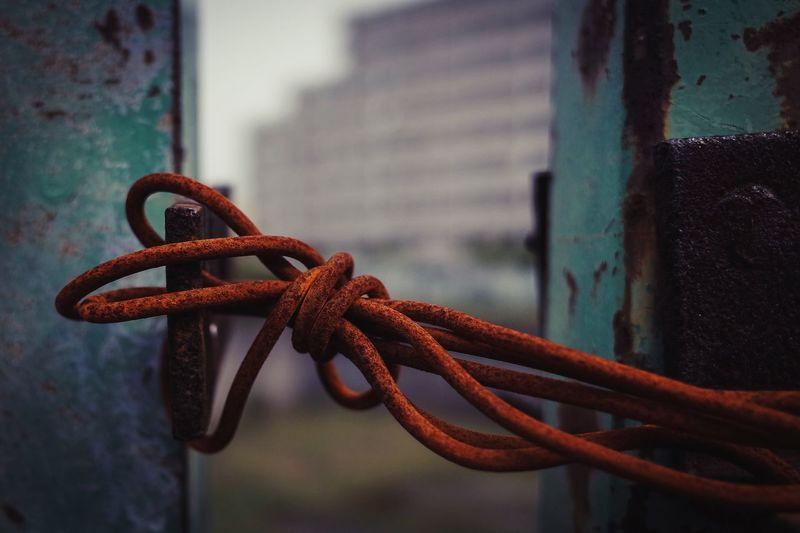 Rusty metallic wire tied on hook
