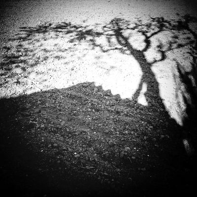 L'ombre Blackandwhite Black&white Shadow