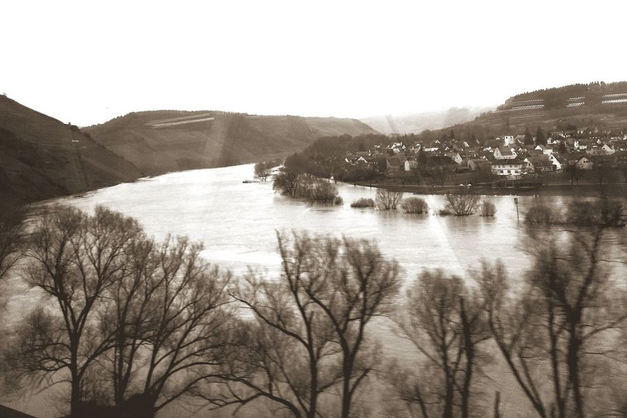 Hochwasser an der Mosel Flooding River Flooding Moselle Valley Moselle Mosel Deutschland Germany Tourist Attractions Tourism Tourismus Tree Nature Outdoors No People Lake Water Mountain First Eyeem Photo