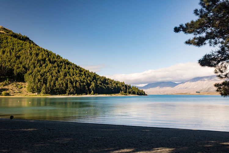 Lake Tekapo Water Sky Beauty In Nature Scenics - Nature Tranquil Scene Tranquility Tree Lake Plant Mountain Non-urban Scene Nature No People Idyllic Land Day Reflection Beach Cloud - Sky Outdoors