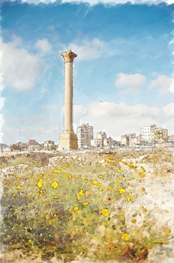 Alexandria Egypt Architecture Building Exterior City Day Flower History No People Outdoors