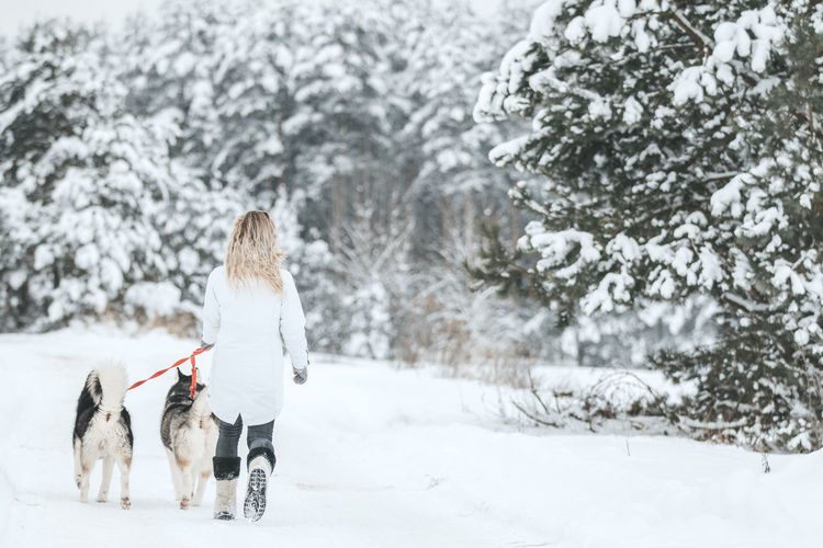 Rear view of woman with dog on snow during winter