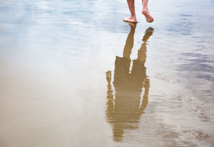 Low section of person standing on wet shore