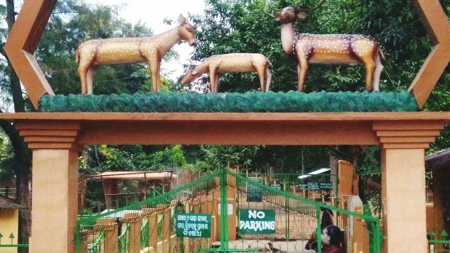 Deer Park Animal Themes Deer Park OrissaDiaries Welcome Gate Deer Statue Animal Outdoors Architecture Colorful Desıgn