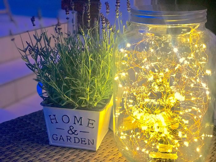 Home And Garden Nightphotography Garden Illuminatiion Garden Text Plant Communication Nature Western Script No People Outdoors Illuminated Potted Plant Herb Flowering Plant