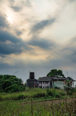 Robertsport West Africa Liberian Building Abandoned Abandoned Places African Africa Liberia Civil War Overgrown