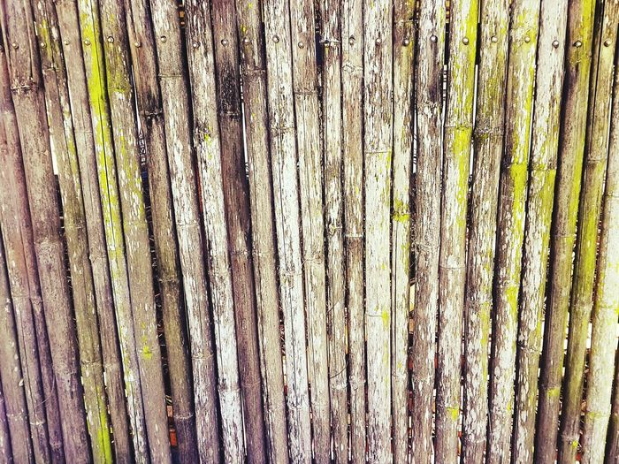 Beautifully Organized Bamboowall Close-up Backgrounds Textured