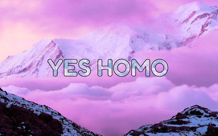 Me Lesbian Homo  Truth