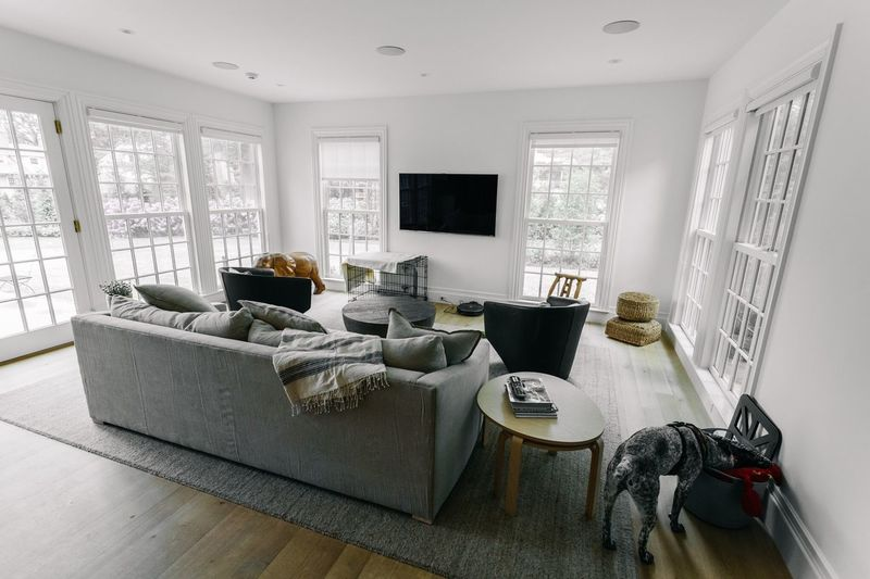 Indoors  Home Interior Window Sofa Living Room Day No People Home Showcase Interior Architecture