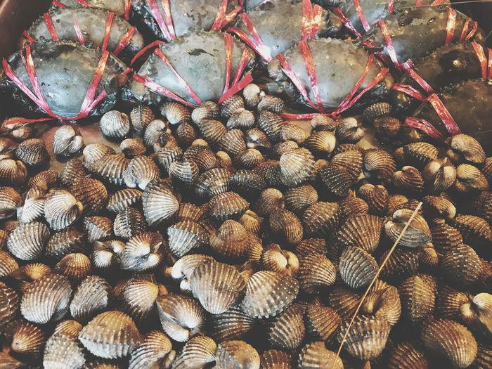 Full frame shot of seafood for sale at market