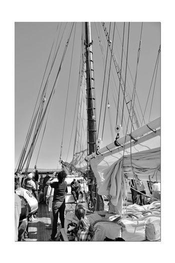 Sailing Aboard The Alma 5 Alma 1891 Scow Schooner Flat-bottomed Wooden-hulled Hoisting The Sails My Hiking Group Outdoor Afro Deck Hands Sailors Sailing San Francisco Bay This Is Hard Work! This Will Get You In Shape Masts No Time For Sightseeing Now Guide Supervises Blue Sky Sails Up Ships Rig Masts A Perfect Day For Sailing Monochrome Black & White Black And White Photography Black And White Black And White Collection
