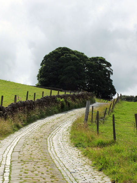 country lane with cobblestones with dramatic sky Beauty In Nature Cloud - Sky Cooblestone Day England Grass Green Color Landscape Nature No People Outdoors Pennines Rambling Rural Scene Scenics Sky Tranquil Scene Tranquility Tree Upwards Walking Yorkshire Yorkshire Dales