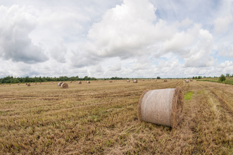 Agriculture Bale  Beauty In Nature Cloud - Sky Day Farm Field Hay Hay Bale Landscape Nature No People Outdoors Rolled Up Rural Scene Scenics Sky Tranquility