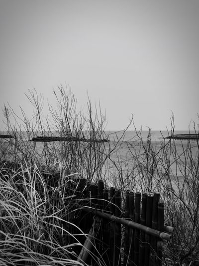 Nature No People Sea And Sky Monochrome Photography Loneliness Endoftrip