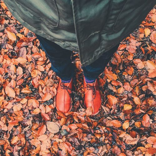 Low section of man standing on dry autumn leaves at park